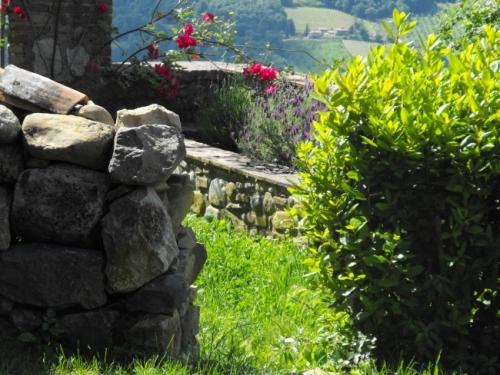 Viceno Garden